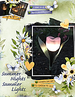 2019-Garden-Lights-web.jpg