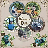 Wisconsin-Dells-2010.jpg