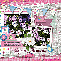 spring-flowers_webjmb.jpg