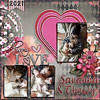 fddFiddlesticksNumber74_Savanna_web.jpg