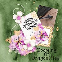 zoomingdragonflies600.jpg