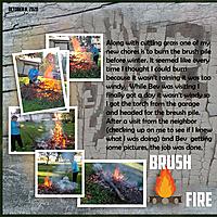 Brush_Fire.jpg