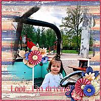 Look-I_m-driving.jpg