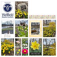 03-27-21_Wellfield-_A_600.jpg