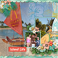 Island-Life.jpg