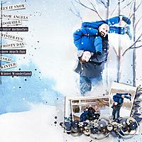 WinterFunsm.jpg