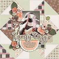 comfy-cozy3.jpg