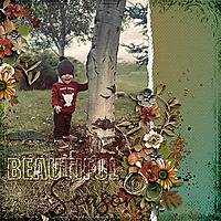 CarolW_HarvestTime-BeautyOfAutumnTemp-Nick9-2021-copy.jpg