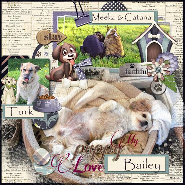 01-Puppy-love
