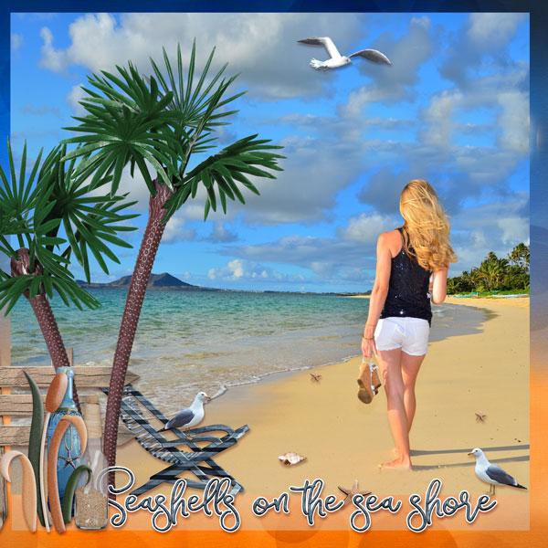 01-Seashels-on-the-beach