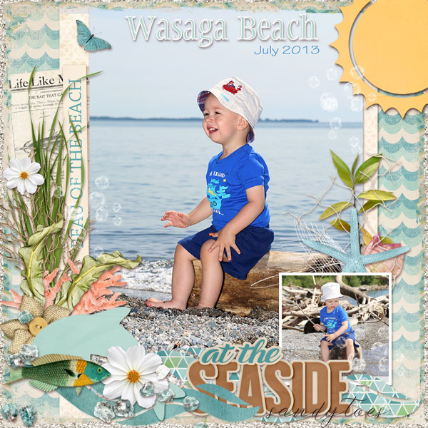 01-Wasaga-Beach-July-2013
