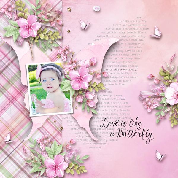 01-butterfly-love