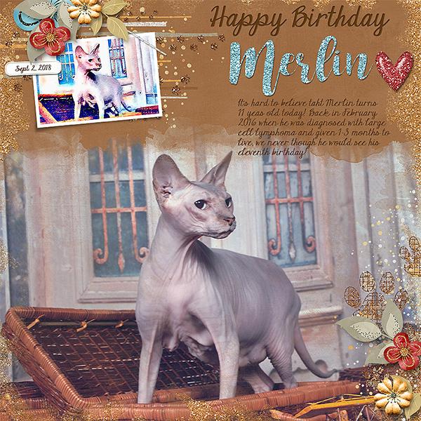 Happy Birthday Merlin