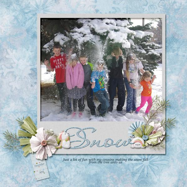 12-Timothy_snow_2015_small