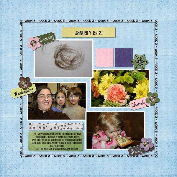 2011 365- Week 3b