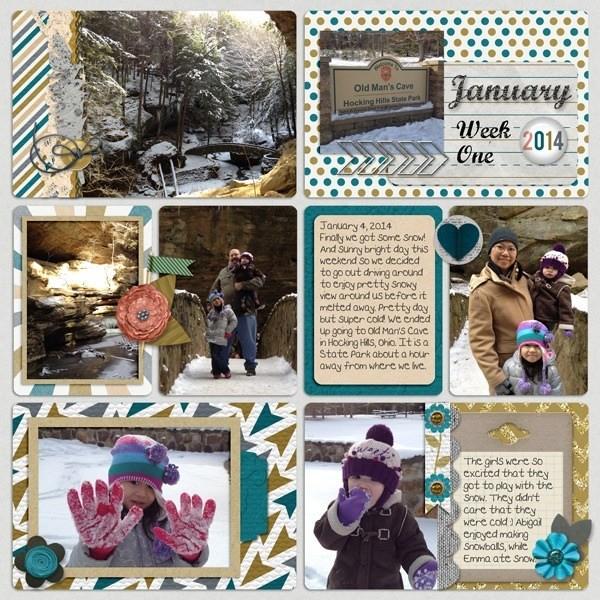 2014-01-08_Jan_week1_pixelily