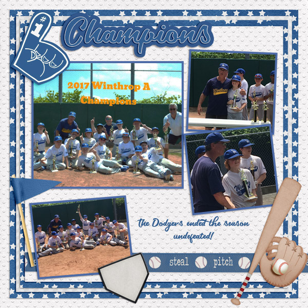 2017 AJ Baseball Champs
