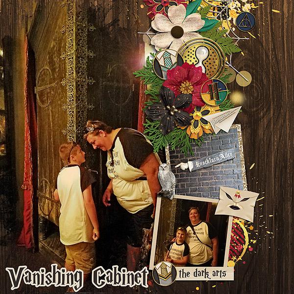 Vanishing Cabinet