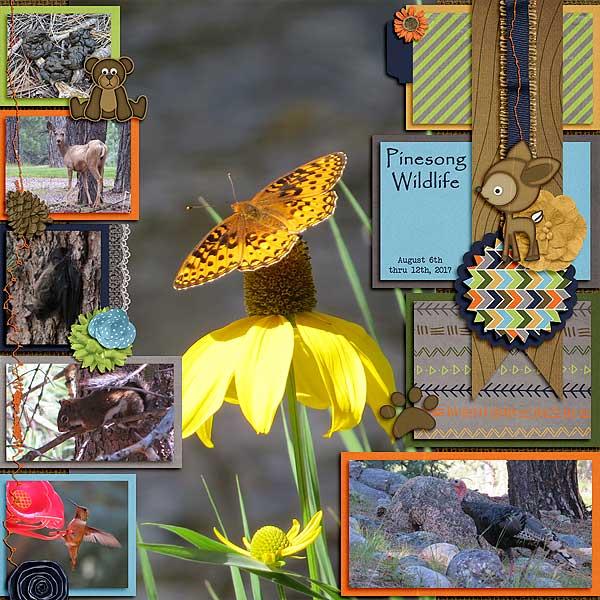 Pinesong Wildlife