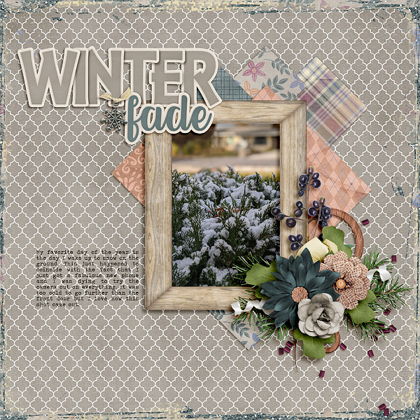 Winter Fade