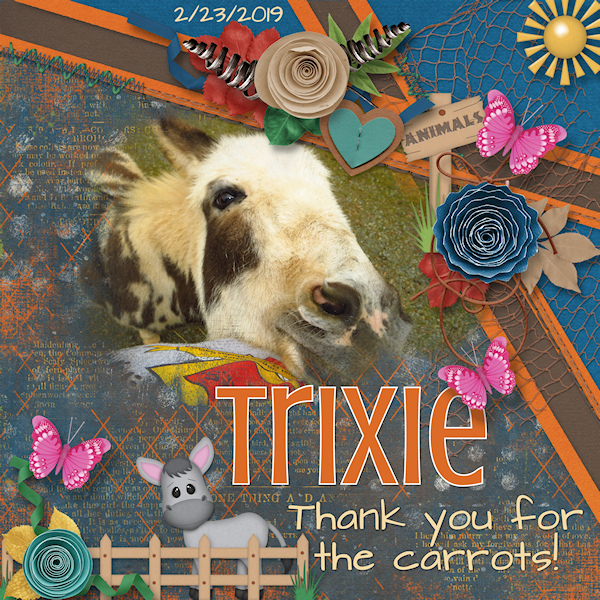 Silly Trixie!