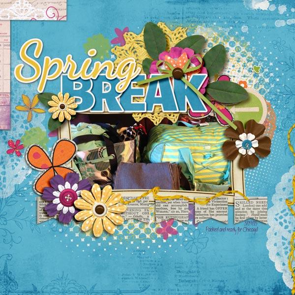 Spring Break Luggage