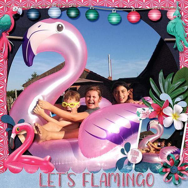 lets flamingo