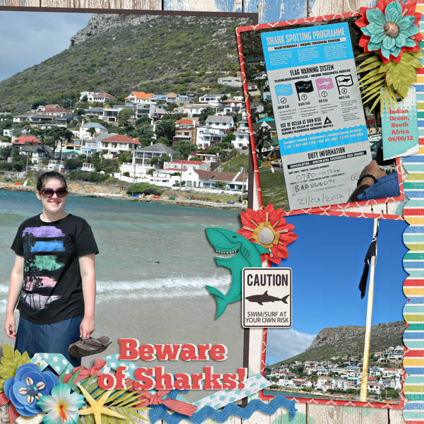 Beware of Sharks!