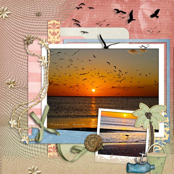 Birds at Sunset