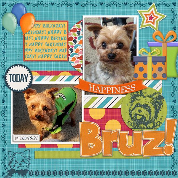 Happy Bday Bruz