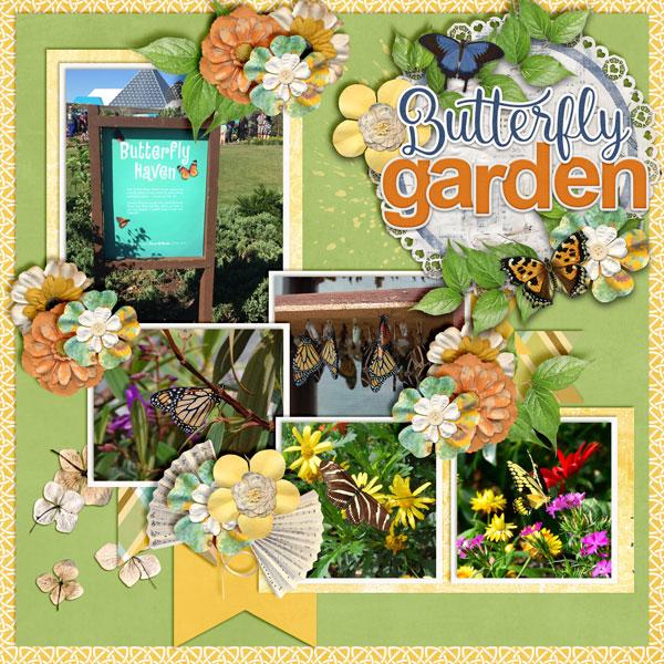 Butterfly-Garden3
