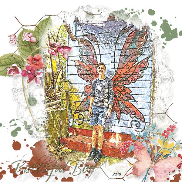 Butterfly Boy