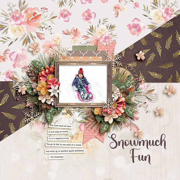 Snowmuch Fun