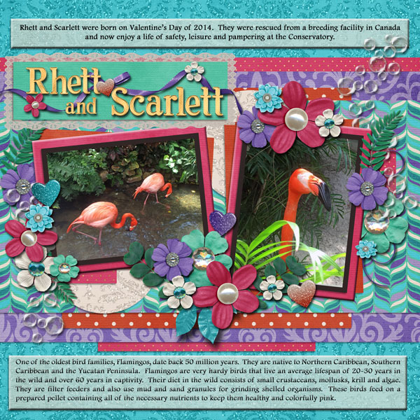 Rhett & Scarlett