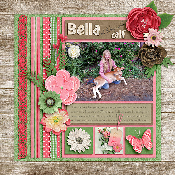CathyK_SummerBlooms-Aprilisa_PicturePerfect135_Bella6-2017-copy