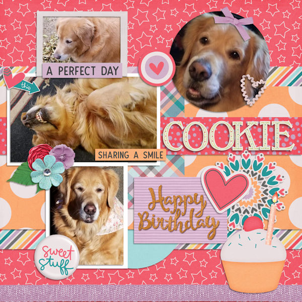 Happy Bday Cookie