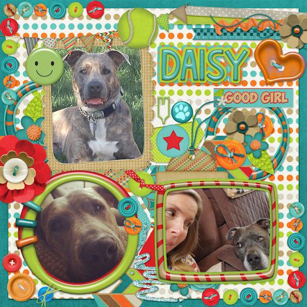 Happy Bday Daisy