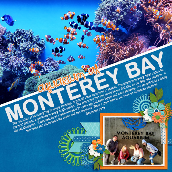 December-19-Monterey-Bay-Aquarium1WEB