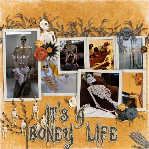 Its a Boney Life