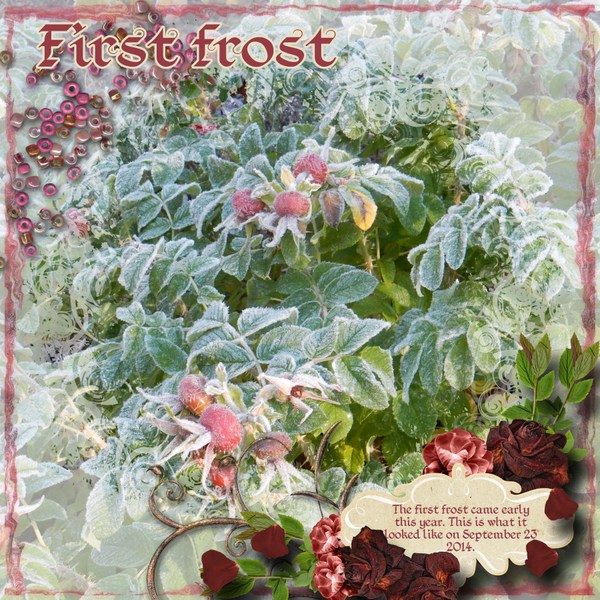 First_frost