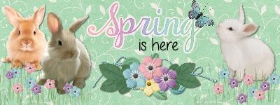 Spring is here FB header