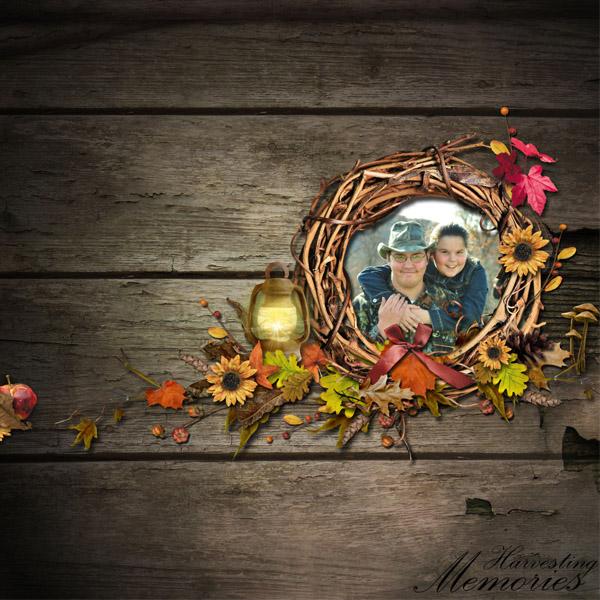 Harvesting Memories