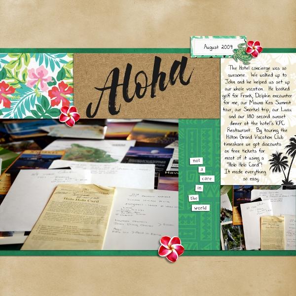 Hawaii 2009 Aloha Concierge