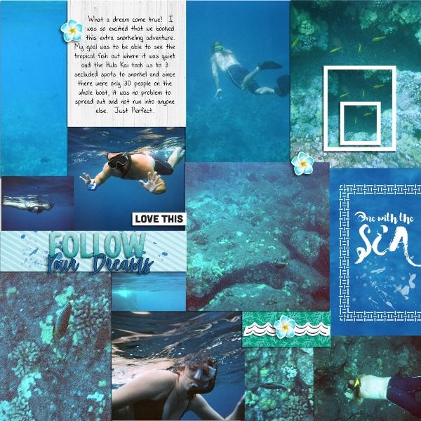 Hawaii 2009 - Snorkeling