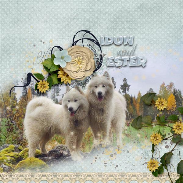 Idun-and-Ester