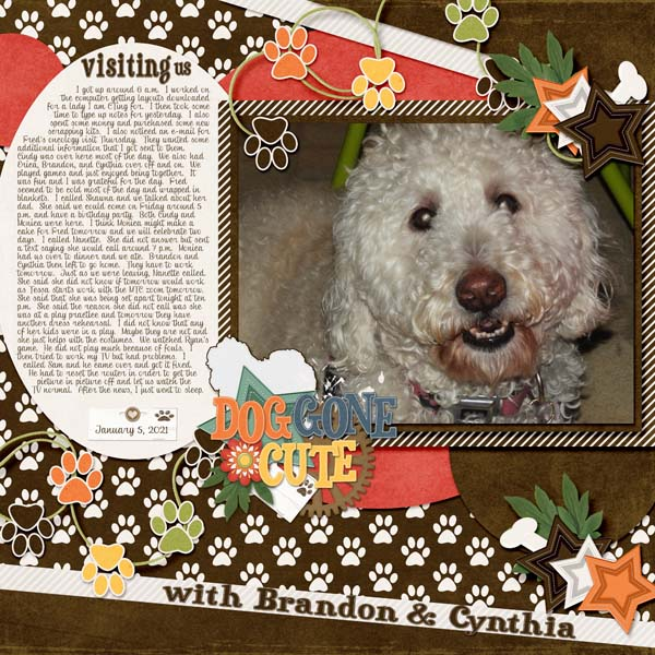 January_5_2021-banner_6-Dog_s_Life