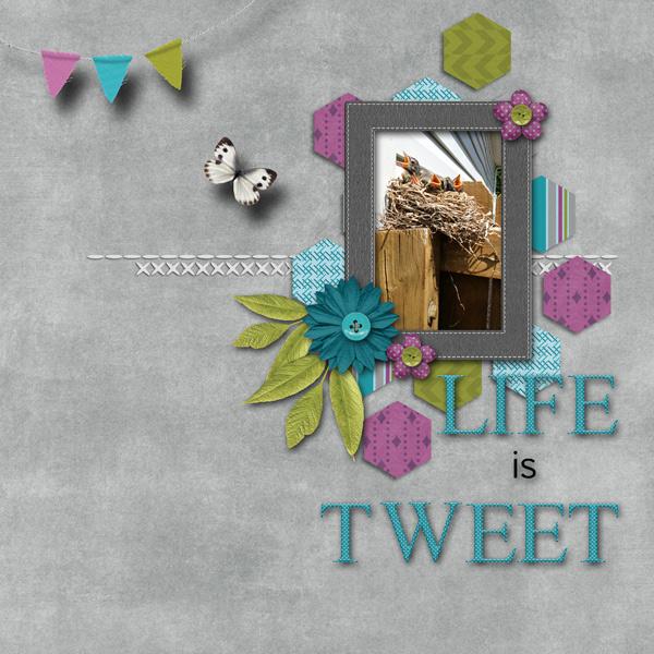 Life is Tweet