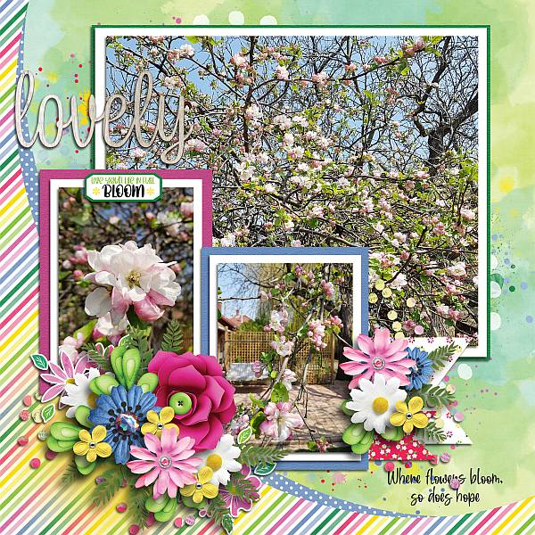 Life in full bloom