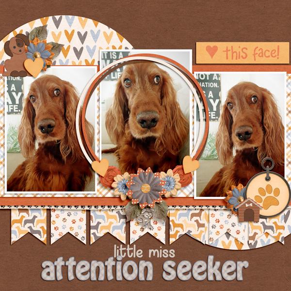 Little Miss Attention Seeker