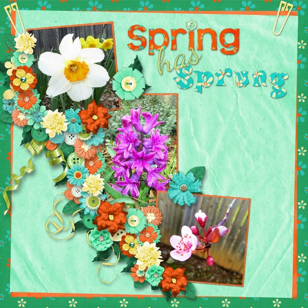 Feels Like Spring!